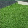 Искусственное газонное покрытие Multi LSR 15