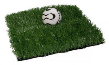 Футбольное поле у вашего дома