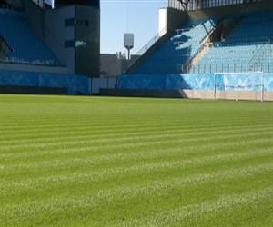В 2017 году будет уложен газон на стадионе «Динамо»