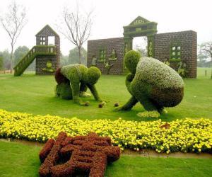 Рисунок на газоне – как удивить соседей?