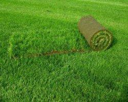 Искусственный газон: применение